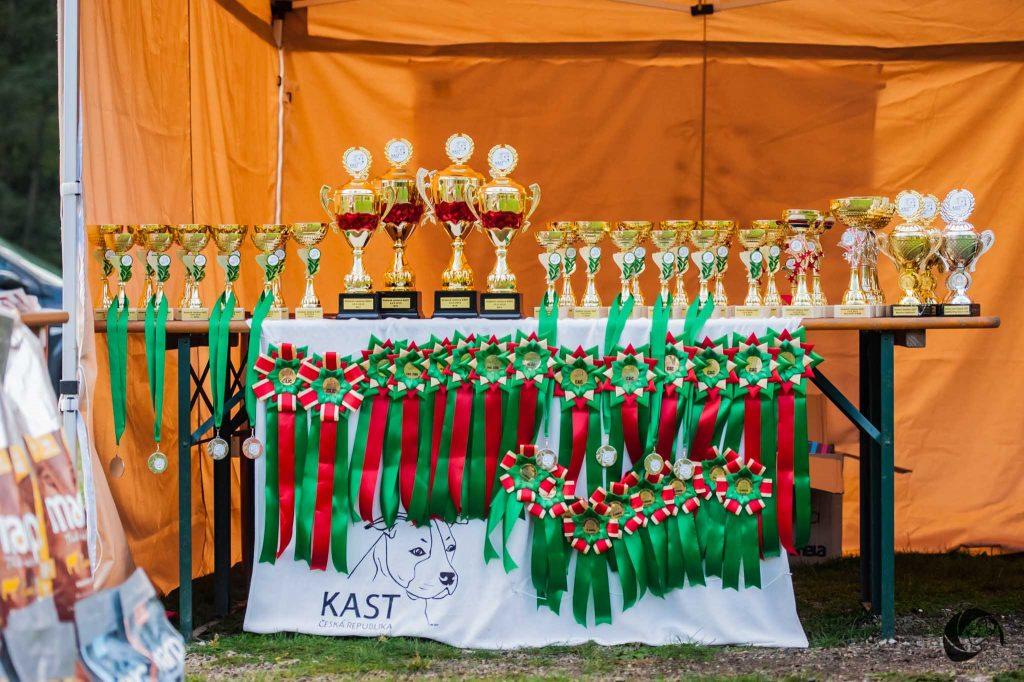 Klubová aSpeciální výstava KAST – 14.-15.09.2019